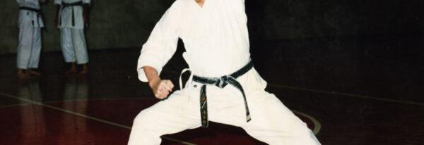 وبلاک عکس های کاراته کاراته